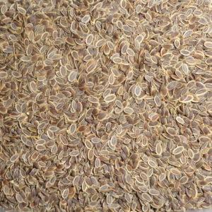 Укроп (семена), 50гр